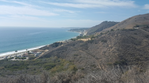 Lot of hiking options close to downtown. This one was in Malibu.